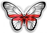 Beautiful Butterfly With St Georges Cross England Flag Vinyl Car Sticker 130x90mm